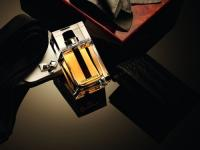 Dior Homme 2011 (by Francois Demachy), Dior Homme Intense 2011 (Francois Demachy) Dior J`adore Eau de Toilette 2011